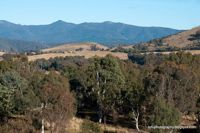 Mt Taylor - June 2012